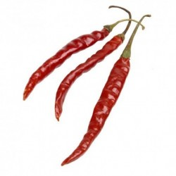 Dried Chile de Arbol