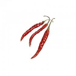 Chile de Arbol seeds