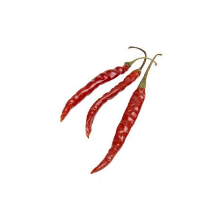 Chile de Arbol seeds