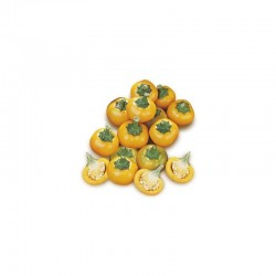 Cherry Pepper Yellow seeds
