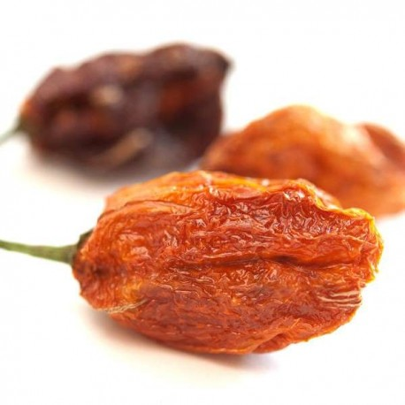 Dried Habanero Red Savina
